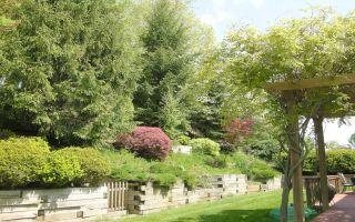 2462 Dogwood Drive, Ramblewood | Wexford